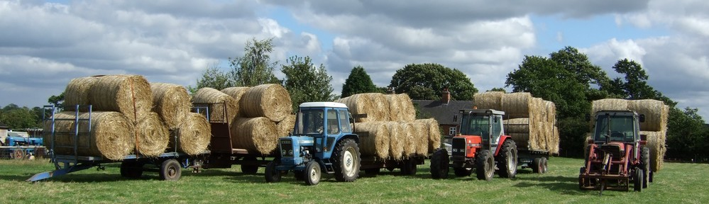 Tractors at Brickyard Farm