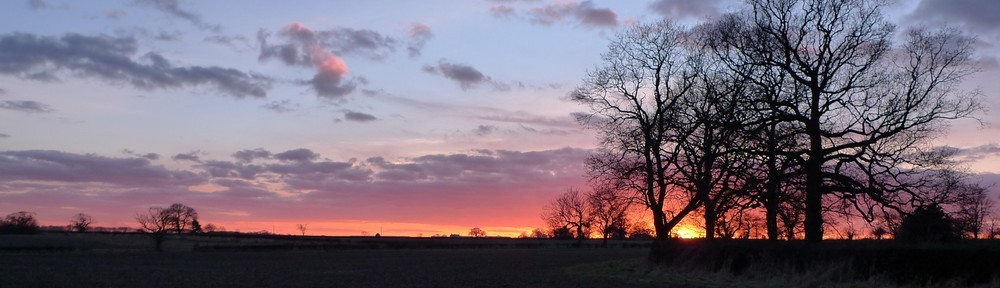 Sunset at Brickyard Farm