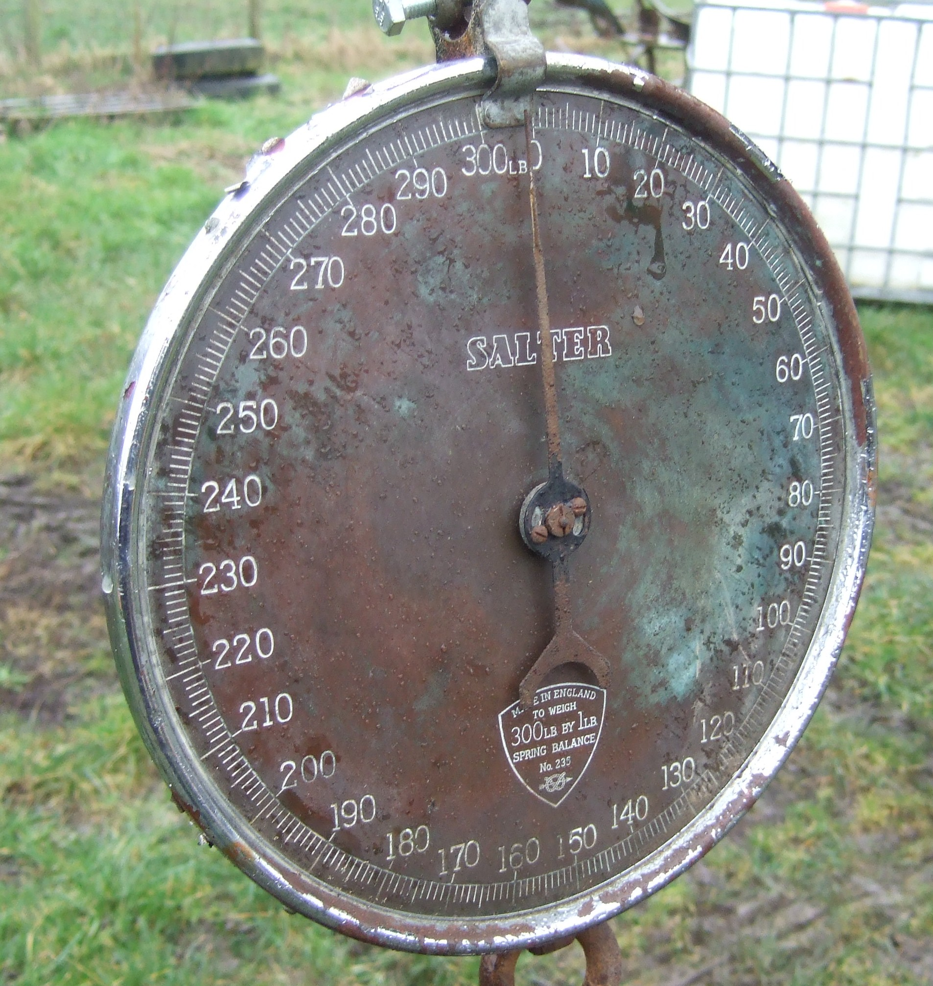 Brass dial on antique sheep weight scales